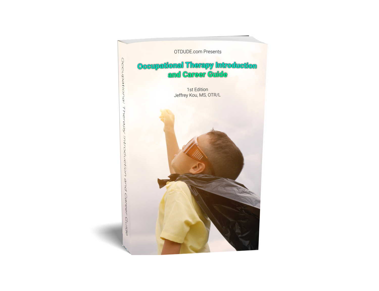 Occupational Therapy Introduction and Career Guide (E-book)